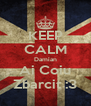 KEEP CALM Damian Ai Coiu Zbarcit :3 - Personalised Poster A4 size