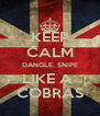 KEEP CALM DANGLE, SNIPE LIKE A  COBRAS - Personalised Poster A4 size