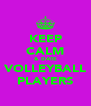 KEEP CALM & DATE VOLLEYBALL PLAYERS - Personalised Poster A4 size