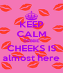 KEEP CALM DEBBIE CHEEKS IS almost here - Personalised Poster A4 size