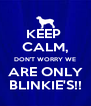 KEEP  CALM, DON'T WORRY WE ARE ONLY BLINKIE'S!! - Personalised Poster A4 size