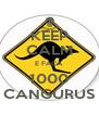 KEEP CALM E FAÇA 1000 CANGURUS - Personalised Poster A4 size