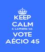 KEEP CALM E LEMBRE-SE VOTE AÉCIO 45 - Personalised Poster A4 size