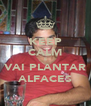 KEEP CALM E VAI PLANTAR ALFACES - Personalised Poster A4 size