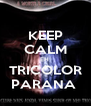KEEP CALM EH  TRICOLOR PARANA  - Personalised Poster A4 size