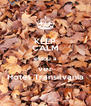 KEEP CALM estou a ver Hotel Transilvania - Personalised Poster A4 size