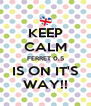 KEEP CALM FERRET 0,5 IS ON IT'S WAY!! - Personalised Poster A4 size
