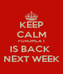 KEEP CALM FORUMLA 1 IS BACK  NEXT WEEK - Personalised Poster A4 size