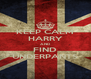KEEP CALM HARRY AND FIND UNDERPANTS - Personalised Poster A4 size