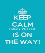 KEEP CALM HARRY POTTER IS ON THE WAY! - Personalised Poster A4 size