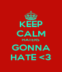 KEEP CALM HATERS GONNA HATE <3 - Personalised Poster A4 size