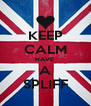 KEEP CALM HAVE  A SPLIFF - Personalised Poster A4 size