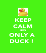 KEEP CALM HES ONLY A  DUCK !  - Personalised Poster A4 size