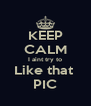 KEEP CALM I aint try to Like that  PIC - Personalised Poster A4 size