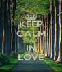 KEEP CALM I FALL IN LOVE - Personalised Poster A4 size