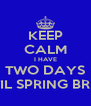 KEEP CALM I HAVE TWO DAYS UNTIL SPRING BREAK - Personalised Poster A4 size
