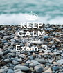 KEEP CALM I passed Exam 3  - Personalised Poster A4 size