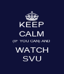 KEEP CALM (IF YOU CAN) AND WATCH SVU - Personalised Poster A4 size