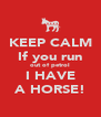KEEP CALM If you run out of petrol I HAVE A HORSE! - Personalised Poster A4 size