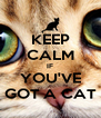 KEEP CALM IF YOU'VE GOT A CAT - Personalised Poster A4 size