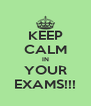 KEEP CALM IN YOUR EXAMS!!! - Personalised Poster A4 size