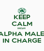 KEEP CALM IRISH  ALPHA MALE  IN CHARGE - Personalised Poster A4 size