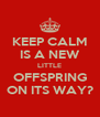 KEEP CALM IS A NEW LITTLE OFFSPRING ON ITS WAY? - Personalised Poster A4 size