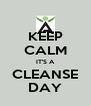 KEEP CALM IT'S A CLEANSE DAY - Personalised Poster A4 size