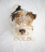 KEEP CALM IT'S GETTING TOO COLD - Personalised Poster A4 size