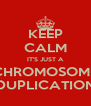 KEEP CALM IT'S JUST A CHROMOSOME DUPLICATION - Personalised Poster A4 size