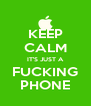 KEEP CALM IT'S JUST A FUCKING PHONE - Personalised Poster A4 size