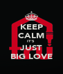 KEEP CALM IT'S  JUST BIG LOVE - Personalised Poster A4 size