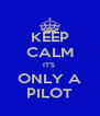 KEEP CALM IT'S  ONLY A PILOT - Personalised Poster A4 size