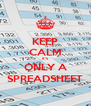 KEEP CALM it's ONLY A SPREADSHEET - Personalised Poster A4 size