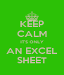 KEEP CALM IT'S ONLY AN EXCEL SHEET - Personalised Poster A4 size
