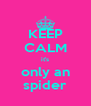 KEEP CALM it's only an spider - Personalised Poster A4 size
