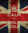 KEEP CALM IT'S ONLY COLD - Personalised Poster A4 size