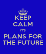 KEEP CALM IT'S PLANS FOR THE FUTURE - Personalised Poster A4 size