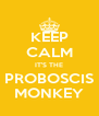KEEP CALM IT'S THE PROBOSCIS MONKEY - Personalised Poster A4 size
