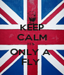 KEEP CALM ITS  ONLY A  FLY  - Personalised Poster A4 size