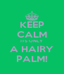 KEEP CALM ITS ONLY A HAIRY PALM! - Personalised Poster A4 size
