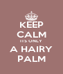 KEEP CALM ITS ONLY A HAIRY PALM - Personalised Poster A4 size