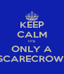 KEEP CALM ITS ONLY A SCARECROW! - Personalised Poster A4 size