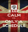 KEEP CALM ITS ONLY A SCHEDULE - Personalised Poster A4 size