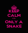 KEEP CALM ITS ONLY A SNAKE - Personalised Poster A4 size