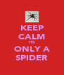 KEEP CALM ITS ONLY A SPIDER - Personalised Poster A4 size