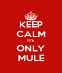 KEEP CALM ITS ONLY MULE - Personalised Poster A4 size