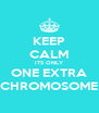 KEEP CALM ITS ONLY ONE EXTRA CHROMOSOME - Personalised Poster A4 size
