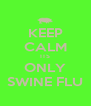 KEEP CALM ITS ONLY SWINE FLU - Personalised Poster A4 size