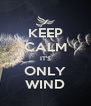 KEEP CALM IT'S ONLY WIND - Personalised Poster A4 size